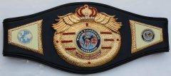 WKF MMA CHAMPIONS